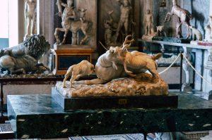 Sculpture of Animals - Vaican Museums